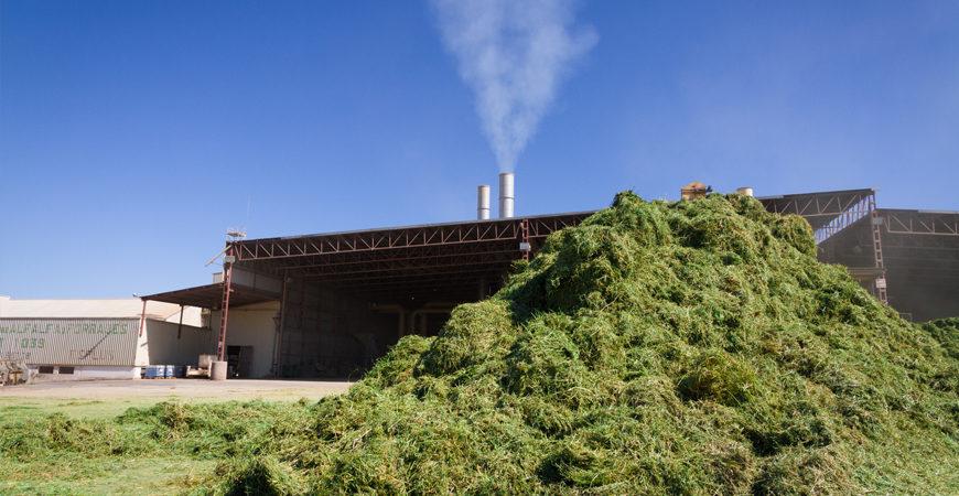 pasarela-medio-ambiente-alfalfas-nafosa-2-1-870×450